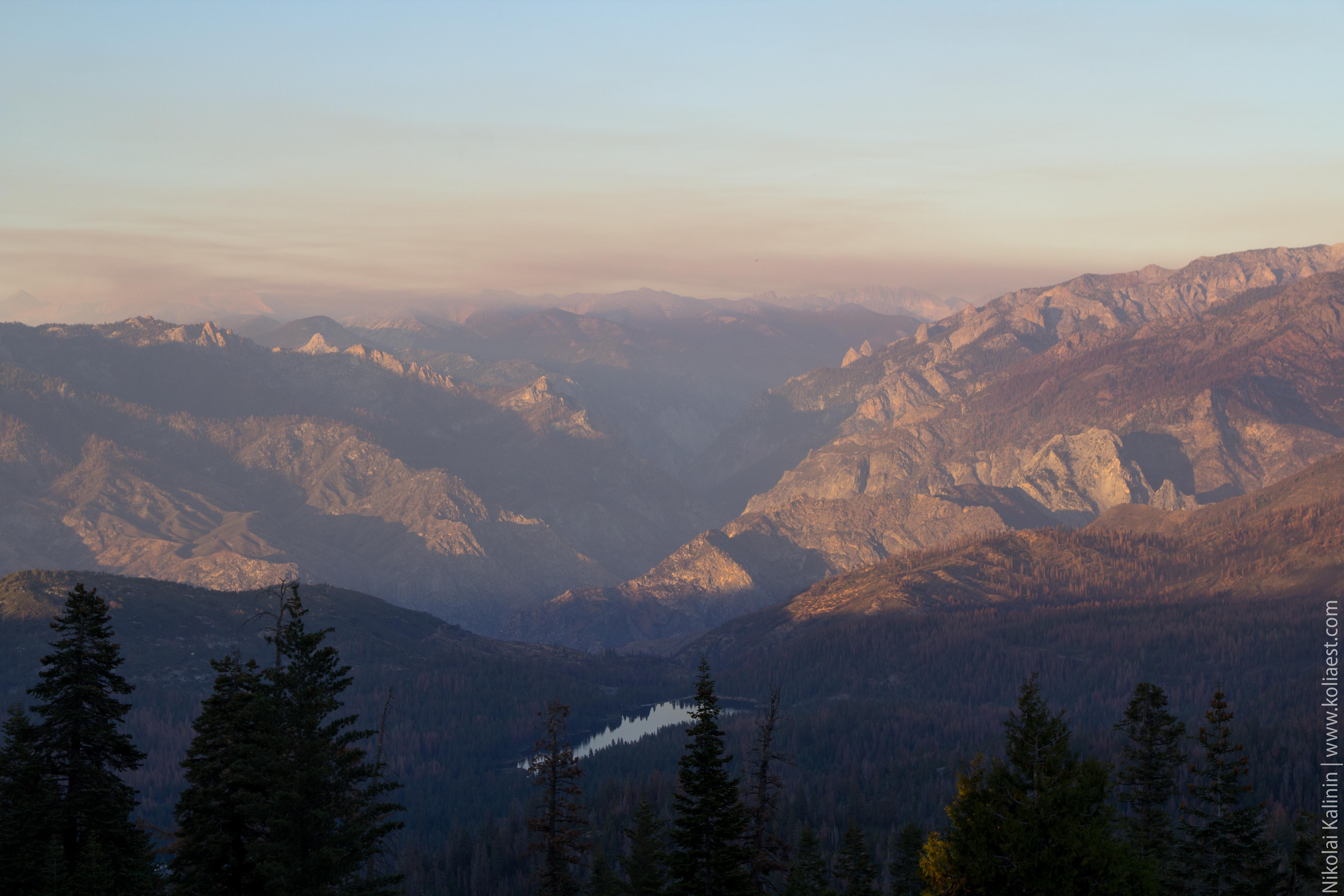 Sequoia-56