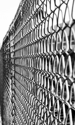 Chain Link Fence | by Sharon Mollerus
