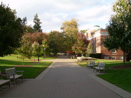 A Look Down Campus Walk | by shauser