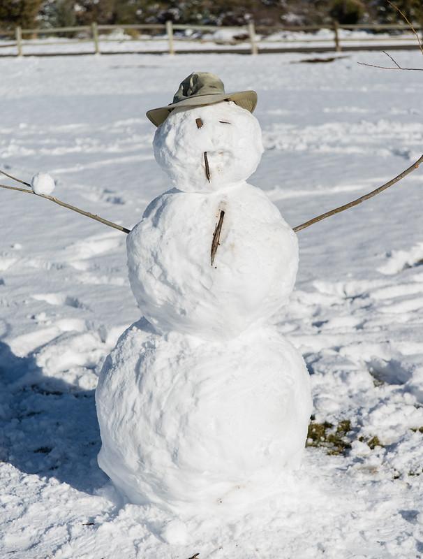 Watson Lake Snowman