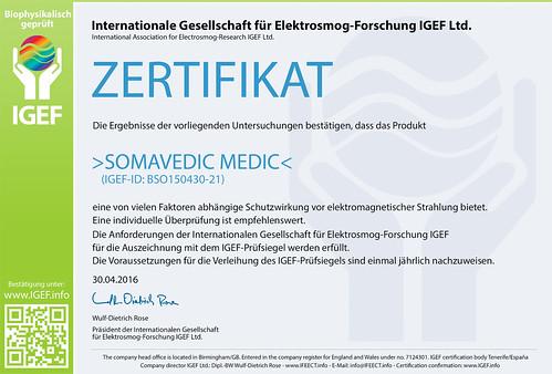 IGEF-Zertifikat-BSO-DE