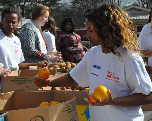An Auburn student picks up oranges from a cardboard box while others in the background sort potatoes.