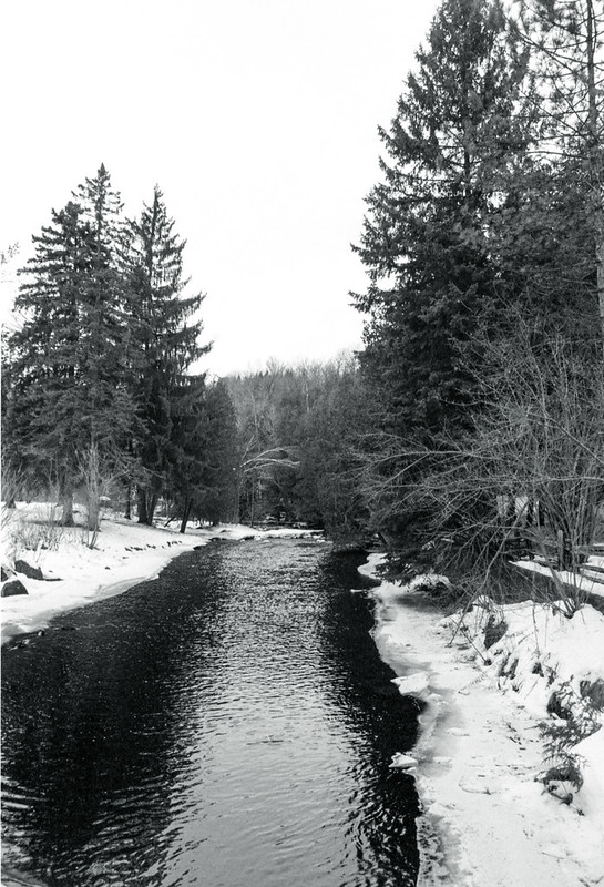 West Credit in the January Thaw