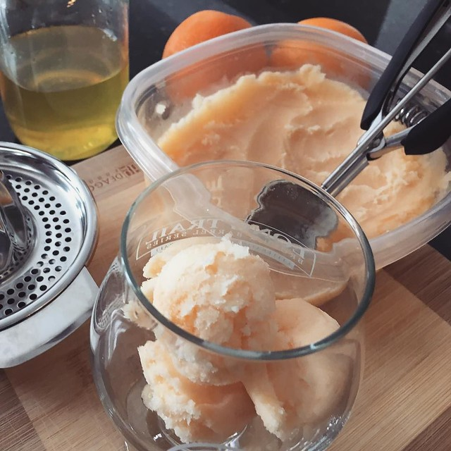 Orange sorbet. 🍊 Orange juice and syrup reserved from making candied peels. #caracaraoranges #sorbet