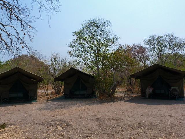 Campamento de Mopane en Botswana (Safari móvil)