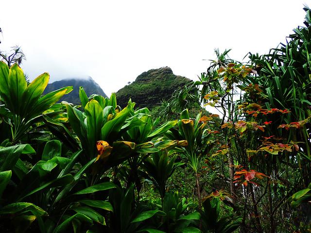 Na Pali Coast Trail, Kauai, Hawaii