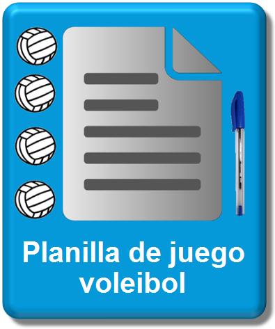 icono planilla oficial voleibol