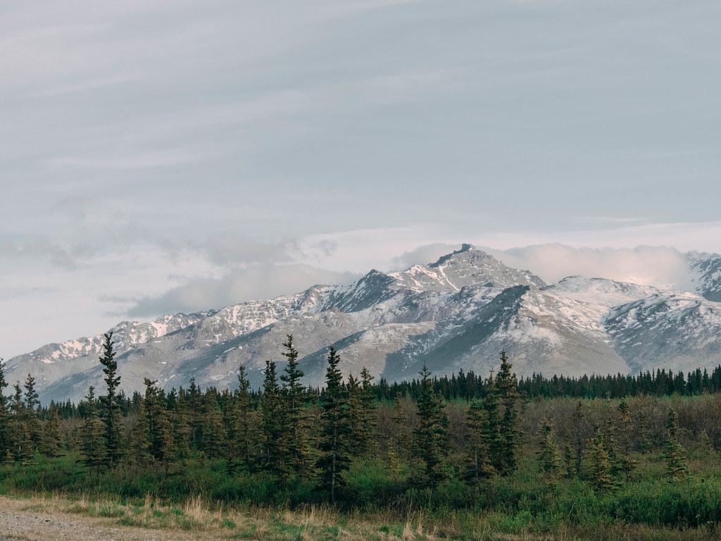 Road to Denali-6