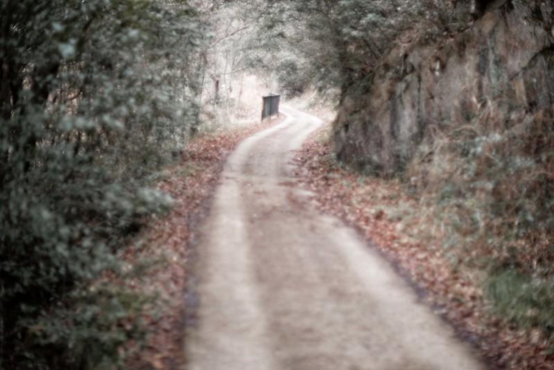 an uphill path