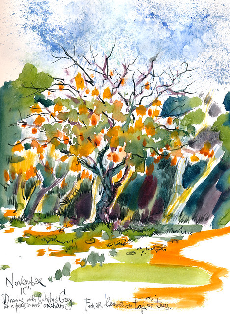 Sketchbook #101: Visiting Persimmon Orchard