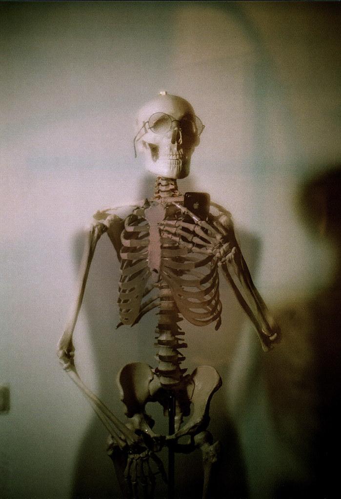 Скелет3