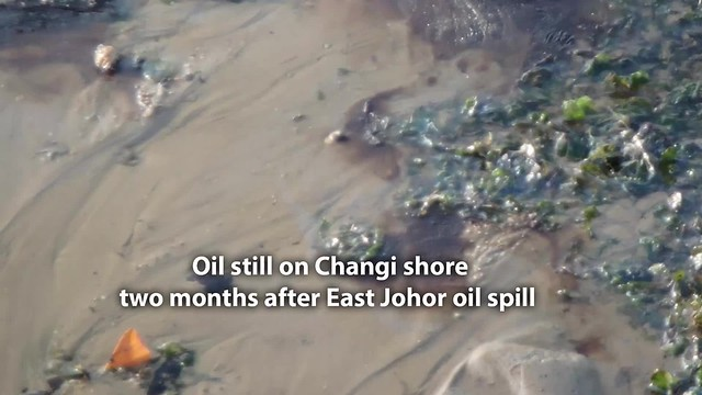 Oil and sheen still seen on Changi