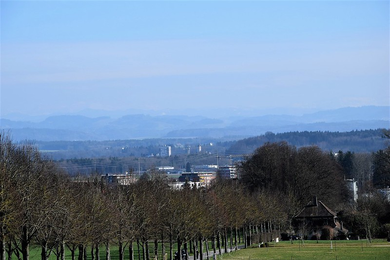 Feldbrunnen 14.03 (10)