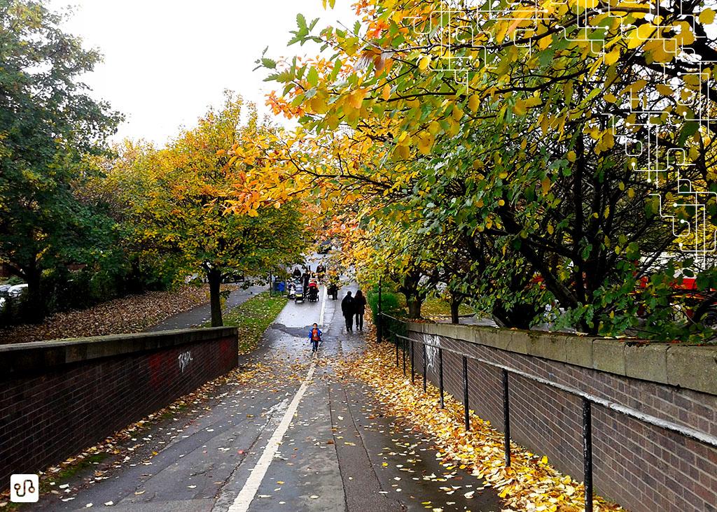 Uma paisagem de outono pra todo mundo que ta morrendo de calor em BH invejar a gente aqui ahaha