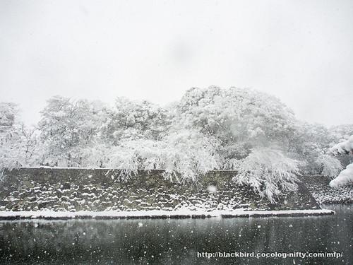 Snowday 1 #05