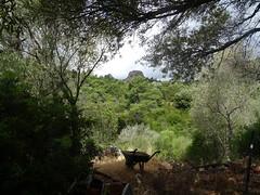 Tentative par la piste de Capu : Punta Sant'Andria