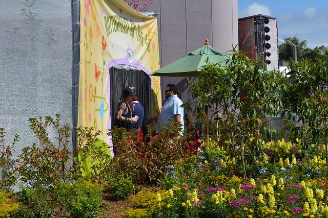 Epcot Flower and Garden Festival Butterfly Garden