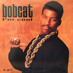 BOBCAT:I'M COOL(JACKET A)