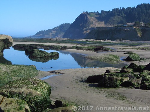 Tide pools near the Punchbowl, Oregon