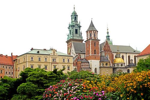Poland-01798 - Flowers