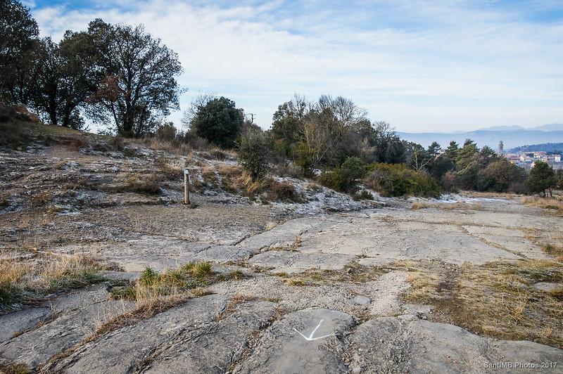 Volviendo al Cami Ral de Vic a Olot desde el dolmen de Puigsespedres
