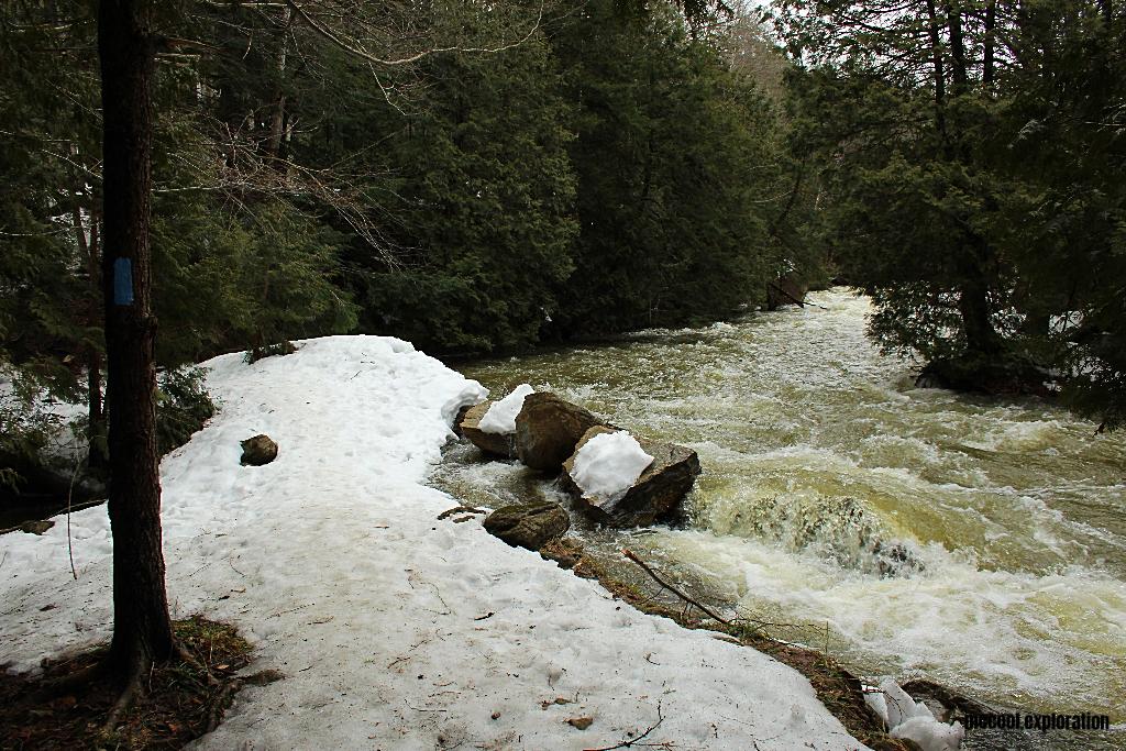 Inglis Falls 06