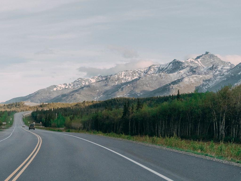 Road to Denali-8