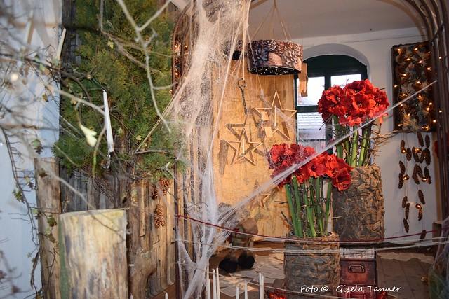 Petersbermuseum Floristisches zur Weihnachtszeit 2016
