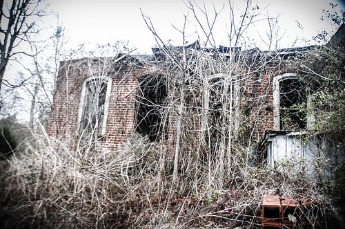 Henry River Mill Village-106