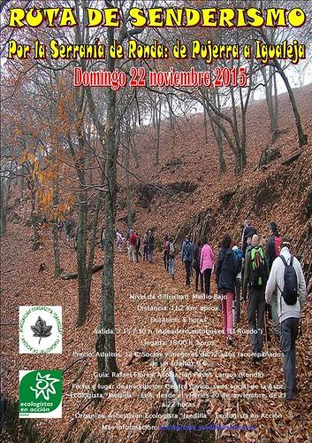 AionSur 21963766203_f3a97bfb68_d Senderismo por el castañar de la Serranía de Málaga el día 22 de noviembre Medio Ambiente