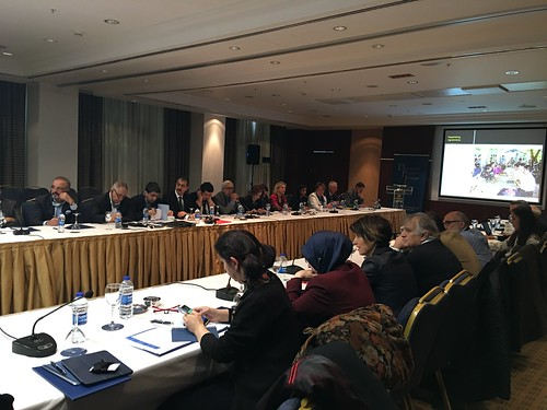 DPI Roundtable in Ankara - March 2017