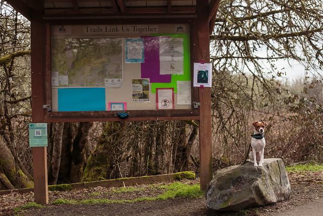 Bald Hill Trails January-3318