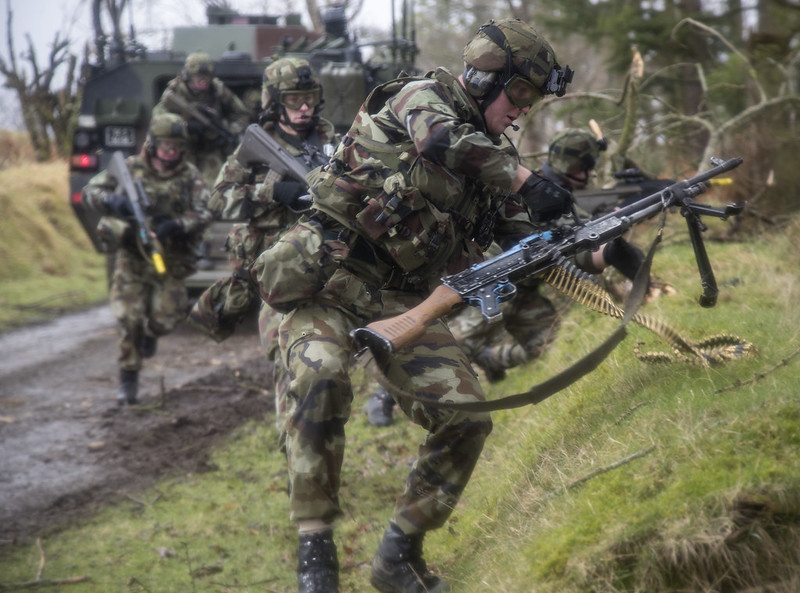 Armée Irlandaise/Irish Armed Forces - Page 2 33150938342_f231d29949_c