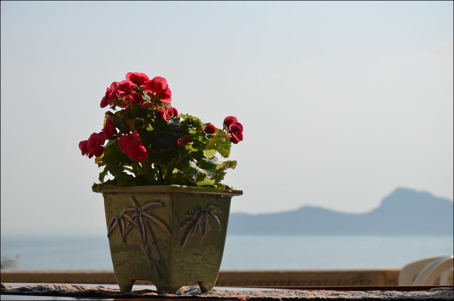 Isola Garda_0196