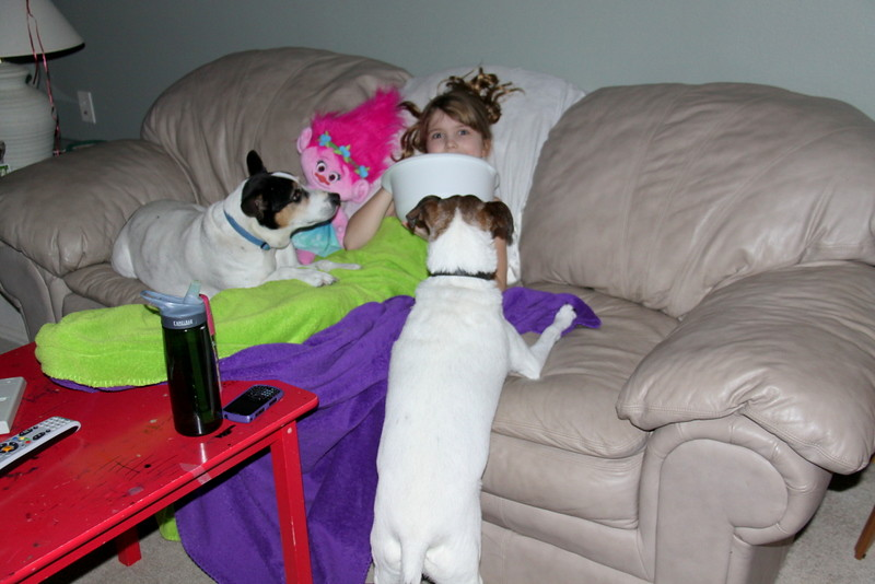 movie with dogs