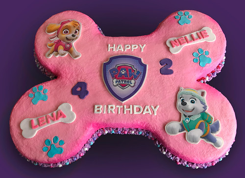 Paw Patrol Cake | by Eat Cake of Indy
