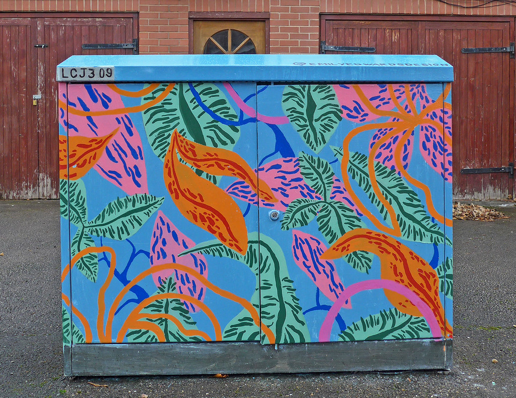 ... Painted fusebox, Headingley | by Tim Green aka atoach