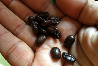 Peet's Coffee and Tea - Major Dickason's Blend Dark Roast beans