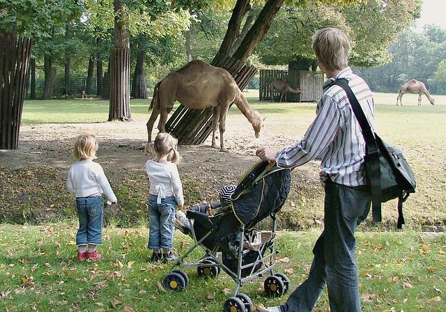 Im Tierpark Berlin
