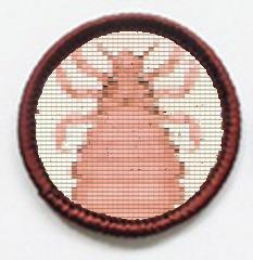 Parenting Merit Badge idea (LICE)
