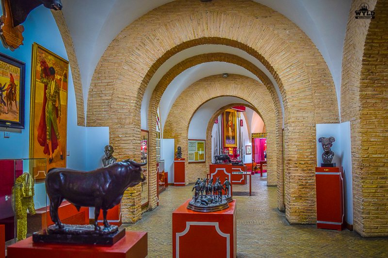 There was so much to see Inside the Seville Bullring Museum. The arches separate the rooms. There are paintings of Matadors and statues of bull's that people learned about the bull with
