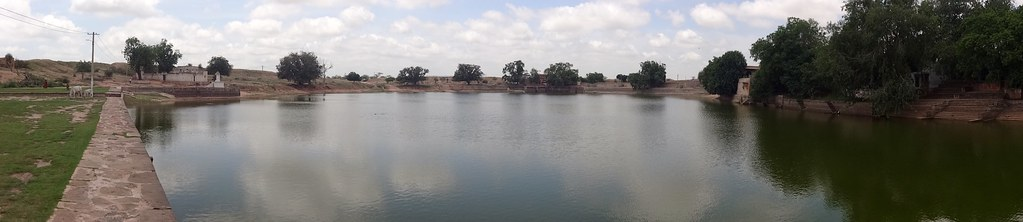 Village ponds are still used for community purposes like drinking as at Mundwa village in Rajasthan. Source: India Water Portal