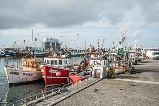 HOWTH FISHING FLEET [WENDY JANE]--109480 | by infomatique