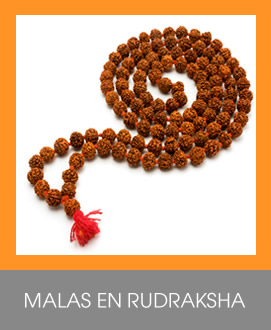 Mala en Rudraksha bogota