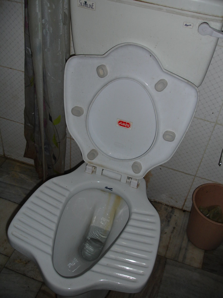 Hybrid Toilet This Is A Hybrid Sit Squat Toilet At The