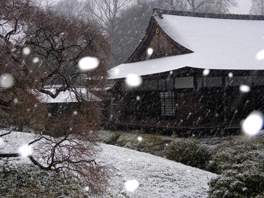 Shofuso Japanese House And Garden In Winter, Fairmount Paru2026 | Flickr