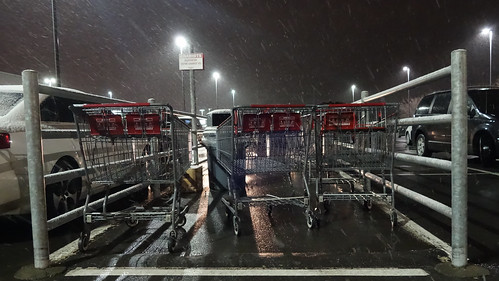 Shopping Carts | by Stephen Downes