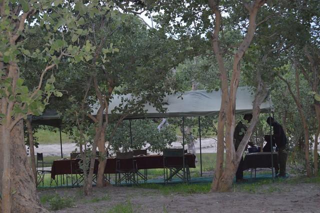 Comedor en el campamento de Mopane en Botswana