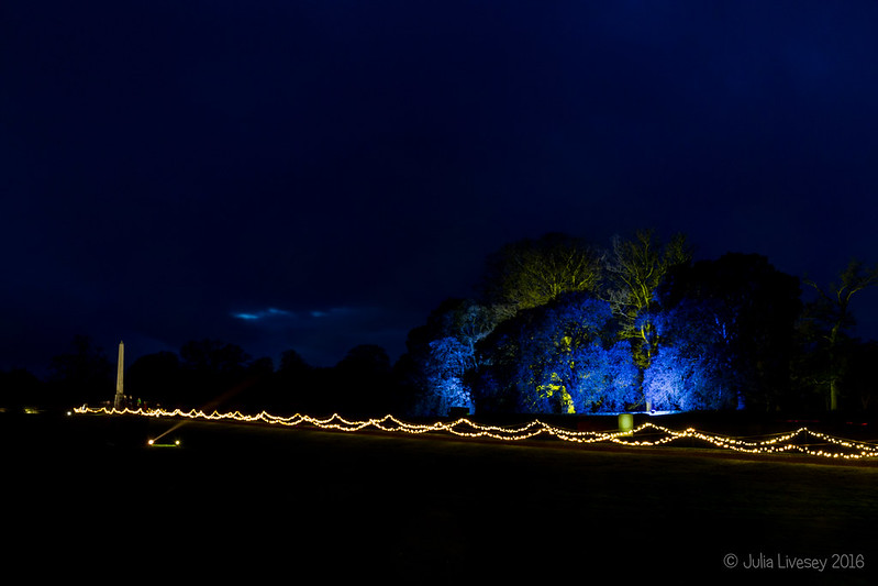 Chirstmas lights at Kingston Lacy