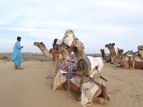 jaisalmer-jr 1-etape 3 - dunes (2)
